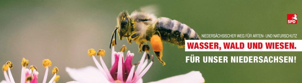 Biene als Symbol für den Niedersächsischen Weg